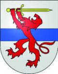 Logo Patrocinio - Ultima pagina